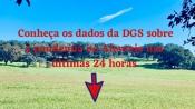 COVID-19/Dados DGS: Alentejo regista mais 531 novos casos e 17 mortes
