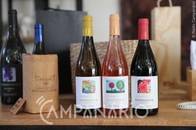 Estremoz: Howard's Folly lança provas de vinho premium e workshop de enologia