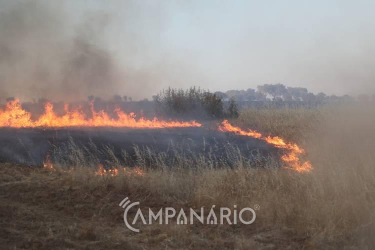 Incêndio em Alandroal mobiliza mais de 2 dezenas de operacionais