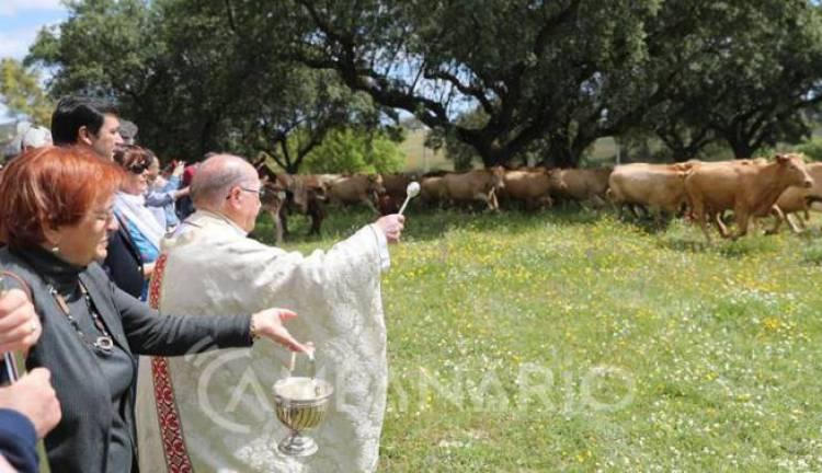 Sousel: Santo Amaro recebe a tradicional Bênção do Gado este fim de semana