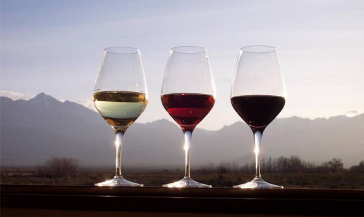 Três vinhos alentejanos no top 100 de revista norte-americana