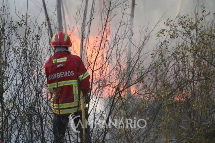 Meio aéreo e meia centena de bombeiros combatem incêndio ás portas do Parque Natural de S. Mamede