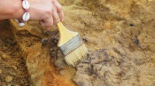 Melides - Arqueólogos protegem com sacos de areia destroços de navio que terá naufragado no século XVII