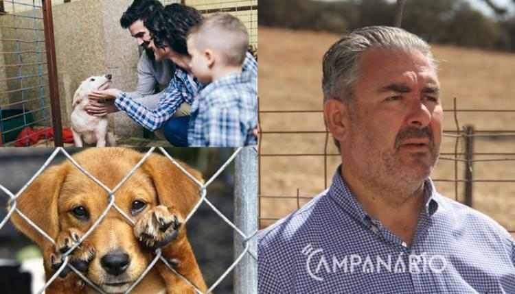 """Autarca de Alandroal diz que """"só deve adquirir animais quem tem condições"""", destacando """"importância dos voluntários no sucesso da campanha"""" (c/som)"""