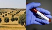 COVID-19/Dados DGS: Alentejo ultrapassa barreira dos 600 casos de infeção
