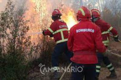 Incêndio em Évora mobiliza perto de 3 dezenas de bombeiros e 1 meio aéreo