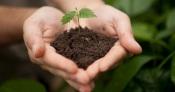 UE: Portugueses debatem a melhor forma de executar a missão «Cuidar dos solos»