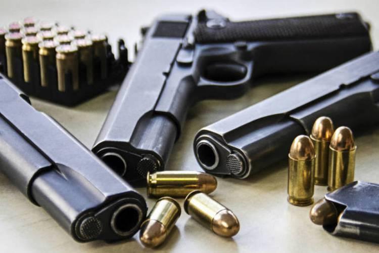 Arsenal com 27 armas e 845 munições apreendido na sequência de caso de violência no Baixo Alentejo