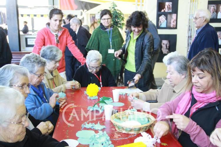 """""""Não damos aos idosos o carinho que eles já nos deram"""", diz representante da Santa Casa de Redondo, na inauguração da IV Feira do Idoso (c/som e fotos)"""