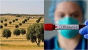 Covid-19/DGS: Alentejo regista 32 novos casos de infeção