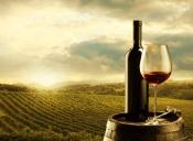 Alentejo leva 6 vinhos ao Top 30 dos Prémios Grandes Escolhas 2020