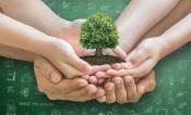 Quer ser mais amigo do Ambiente em 2021? Saiba aqui como, segundo a vice-presidente da Quercus (c/som)