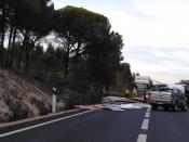 Despiste de veículo pesado de mercadorias condicionou trânsito entre Grândola e Alcácer do Sal