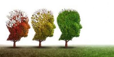 "CIMBAL promove webinar sobre ""Saúde Mental na Pandemia"""