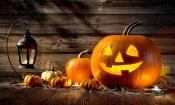 Ferreira do Alentejo: Museu Municipal promove concurso de abóboras para celebrar o Halloween