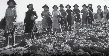 Castro Verde: Museu da Ruralidade apresenta Documentário e Exposição sobre a condição da Mulher nas décadas de 50 e 60 no concelho