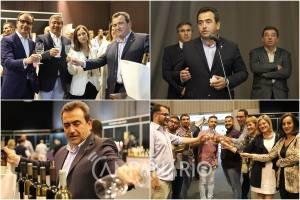 """Com """"30 milhões de litros produzidos"""" os vinhos são """"o motor económico"""" de Reguengos de Monsaraz, diz José Calixto. Veja a fotorreportagem (c/som)"""