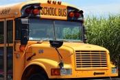 Município de Moura reforça investimento no Transporte Escolar em cerca de 80 mil euros