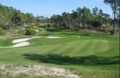 """Melides: Ambientalistas contra a contrução de campo de golfe """"junto"""" ao oceano."""