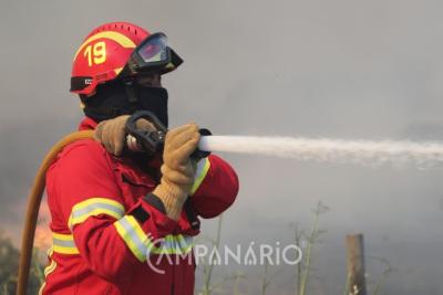 Cerca de 30 operacionais combatem incêndio no concelho de Beja