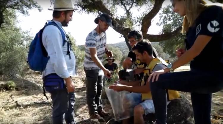 Projeto da Universidade de Évora lança vídeos sobre a importância da geologia e dos recursos minerais (c/vídeo)