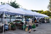 Évora: Mercado 1º de maio com novas tendas e equipamentos