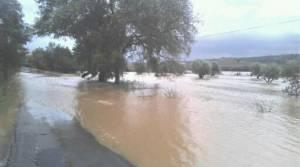 Estremoz, Alandroal e Évora entre os concelhos com risco grave de inundação (c/mapa)