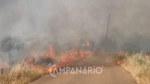 Incêndio perto da EN18 (Évora) mobiliza 3 dezenas de operacionais