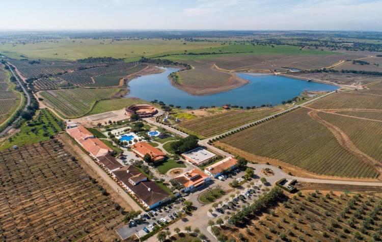O Vila Galé quer construir dois hotéis em Beja, um para casais e outro para crianças, num investimento total estimado em 22 milhões
