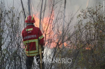 Incêndio em São Miguel de Machede mobiliza mais de 50 bombeiros