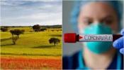 COVID-19/Dados DGS: Alentejo com mais cinco infetados e mais dois óbitos