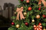 Câmara de Aljustrel já entregou os prémios aos vencedores dos concursos de Natal