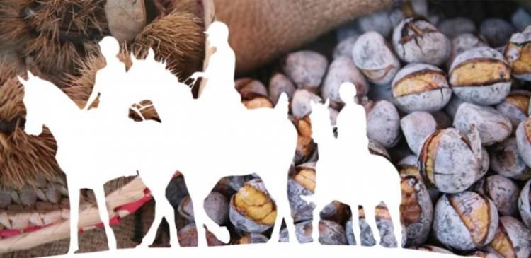 S. Bento do Cortiço recebe VII Festa do Cavalo a 11 de novembro