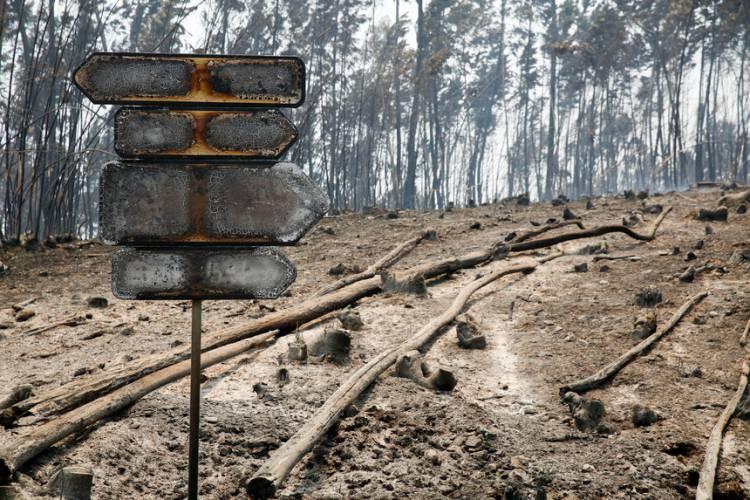 Declarado estado de calamidade pública em 8 concelhos alentejanos