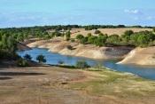 Presidente da Freguesia do Torrão alerta para infestação de jacintos-de-água na albufeira de Vale do Gaio