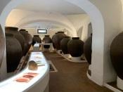 """""""Casa Museu Interativa de Borba"""" vai contar a história do Vinho da Talha da Família Rézio afirmam as proprietárias (C/Som)"""