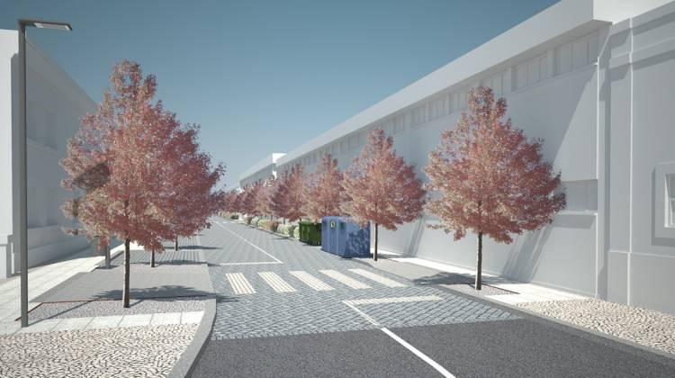 Vendas Novas requalifica rua de acesso à estação ferroviário para beneficiar circulação de peões