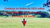COVID-19/Dados DGS: Alentejo com 24 novos casos e sem óbitos nas últimas 24 horas