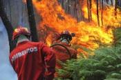 Santiago do Cacém: Quatro meios aéreos e mais de 80 Bombeiros combatem incêndio de grandes dimensões