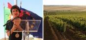 """""""Antes da pandemia, Portugal era o 9º país a nível mundial que mais vinhos exportava e não queremos perder essa marca"""", diz Ministra da Agricultura (C/SOM)"""