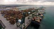 Porto de Sines fecha o ano de 2020 a crescer 13% nos contentores