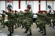 COVID-19: 50 militares portugueses infetados, dois estão internados