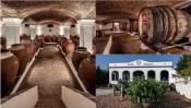 Reguengos de Monsaraz: Adega José de Sousa convida a provar o vinho no S. Martinho!