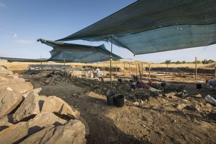 Dia Aberto no complexo arqueológico dos Perdigões com várias atividades (c/fotos)