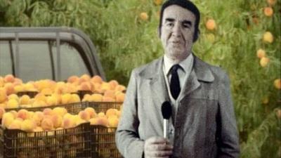 Ministra da Agricultura quer regresso da TV Rural para mostrar modernização do setor