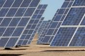 CM Almodôvar apoia projeto para parque solar no Rosário