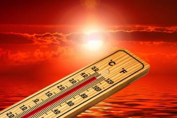 Ano de 2020 entre os três anos mais quentes desde que há registos