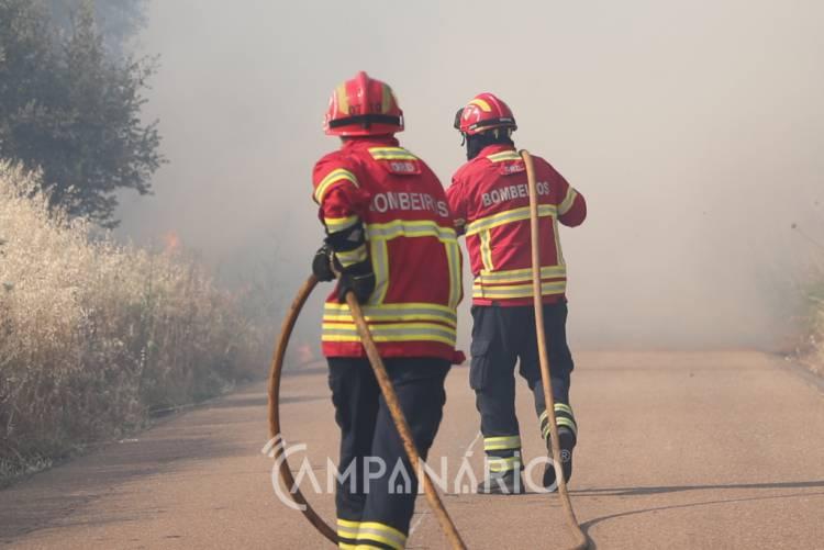 Incêndio agrícola deflagra no concelho de Borba