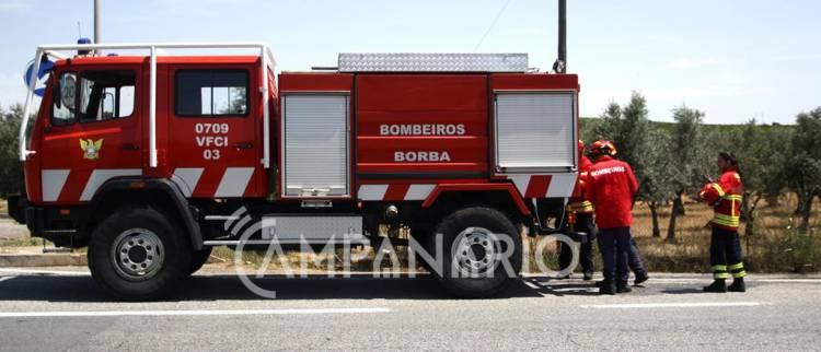Chamas propagaram-se perto de bomba de gasolina á saída de Borba (c/fotos)