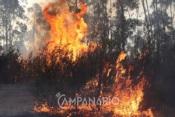Deflagrou um incêndio junto à IP2 em Estremoz